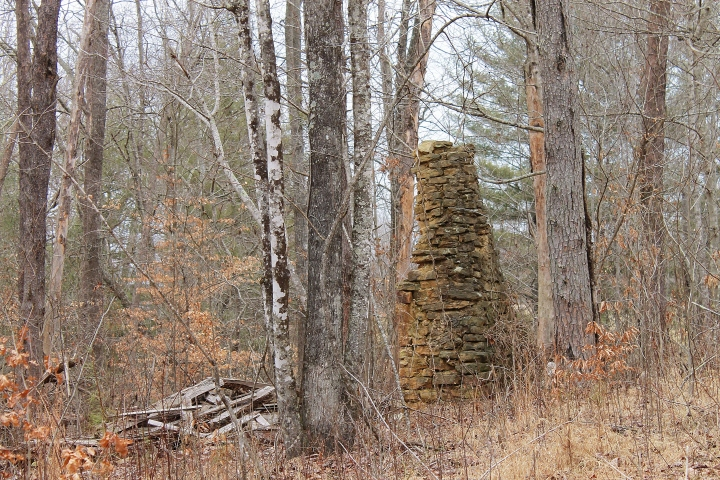 Chimney in the Forest.jpg