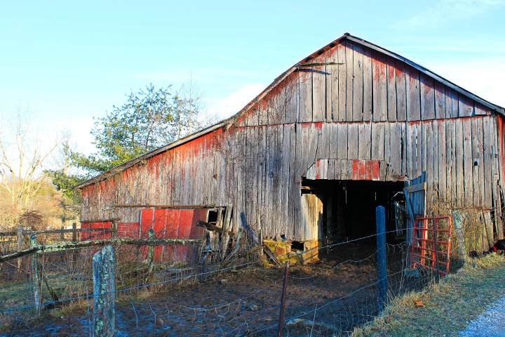 Cattle Barn.jpg